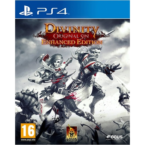 Divinity Original Sin Enhanced Edition PS4 Game